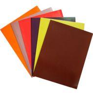 Fascikla color lakirana mix 230 gr. A4